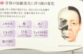 骨格ビジュアル